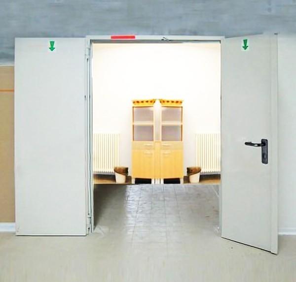 REI 120 fire door with 2 panels
