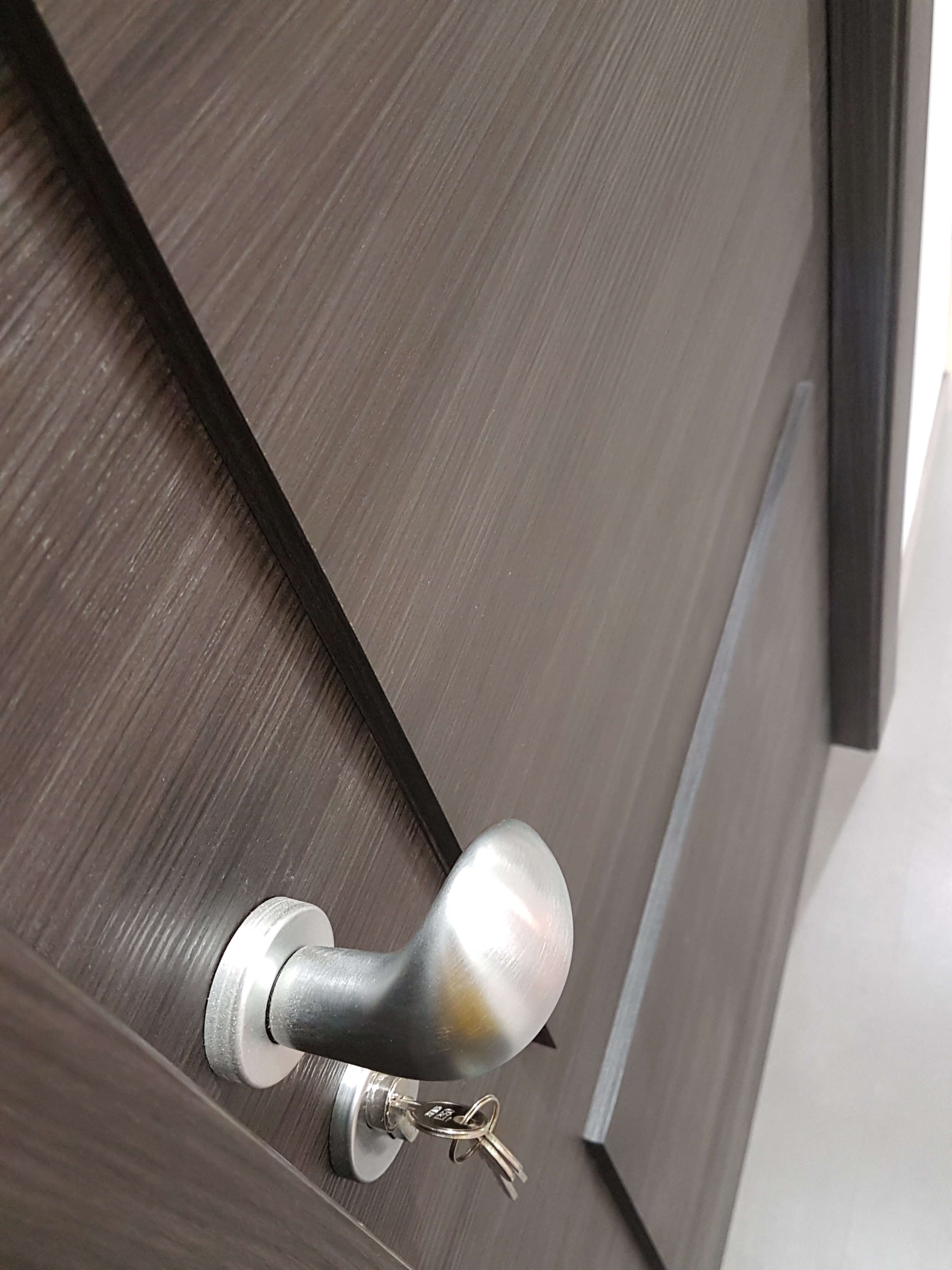 soundproof door handle